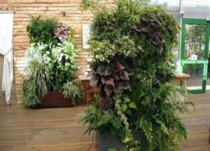 Caracter sticas de los jard nes verticales for Caracteristicas de los jardines verticales