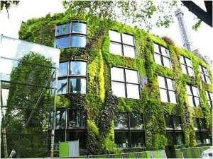 Diseño de Jardines verticales de edificio