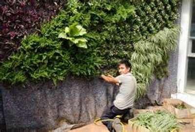 Como hacer un jard n vertical paso a paso for Plantas recomendadas para jardin vertical