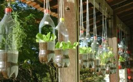Como hacer los jardines verticales con botellas de plastico for Plantaciones verticales