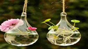 Cómo hacer un jardín de aire