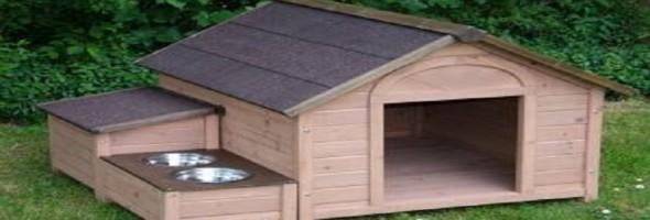 Danione autor en jardines verticales web - Casas para perros pequenos ...