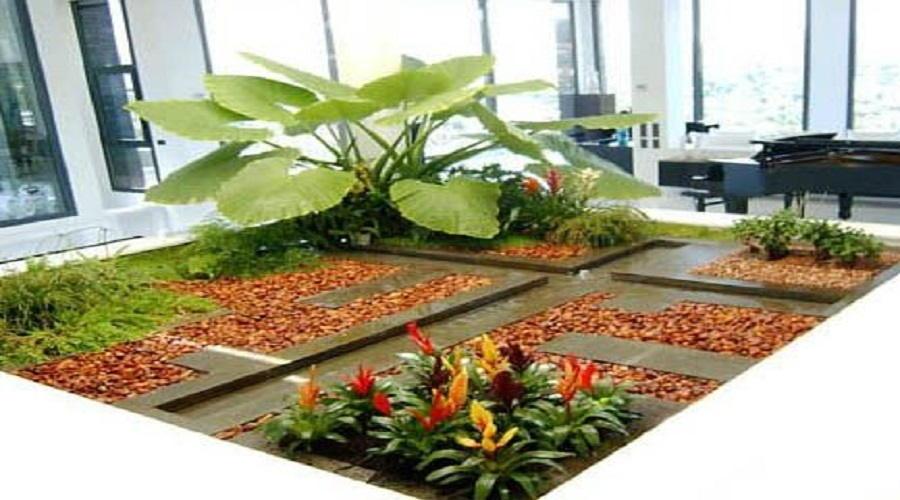 Que debemos de tomar cuenta para un jard n interno for Como hacer un jardin interior en casa
