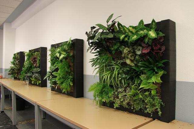 jardines verticales y sus beneficios