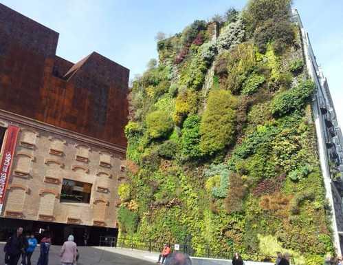 Los 10 jardines verticales mas hermosos del mundo for Jardin vertical caixaforum madrid