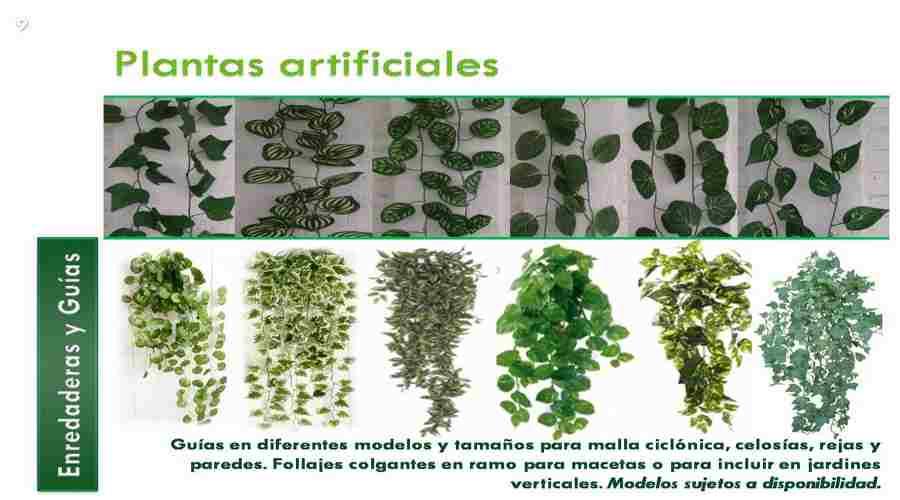 Plantas artificiales baratas para tu jard n vertical for Plantas recomendadas para jardin vertical